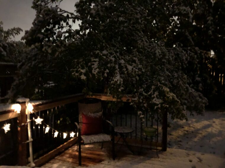 the corner of a backyard patio at night. The lights, furniture, trees, and the ground are all covered in snow.